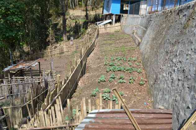 "The school's terraced plots - a total of 650 sq ft. I guess that's why it's called Mondo ""Challenge""."