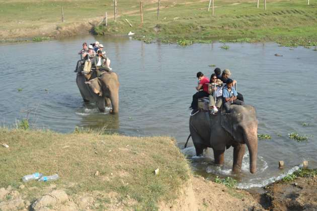 Two of our party following across the river. Happily, our mahout (driver) persuaded ours NOT to give us all a refreshing bath half-way across
